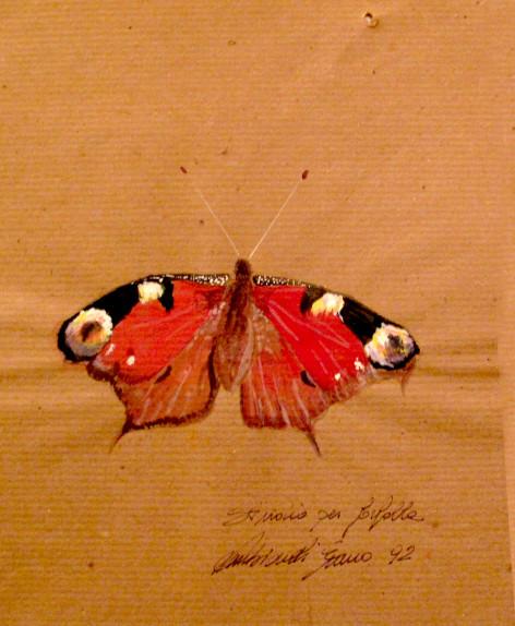 1992. studi per una farfalla olio su carta